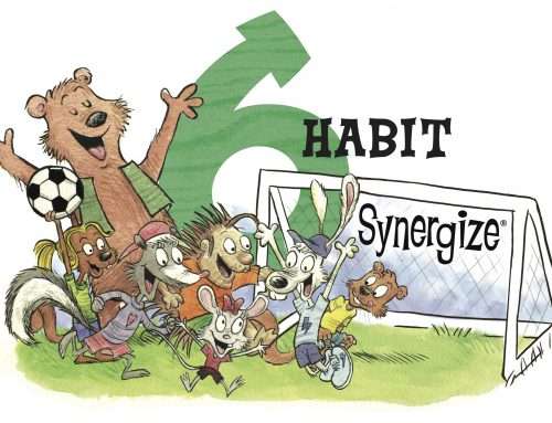The Seven Habits: Habit 6 Synergize
